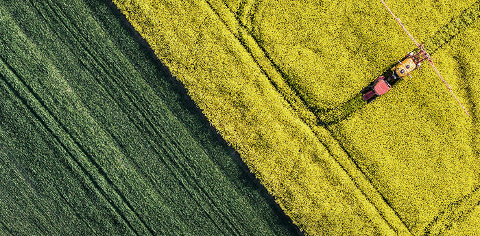 Our Network: Arial view of a farmer harvesting a yellow filed next to a green one.